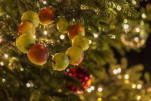 Obernai Noël ©ADT-E.List