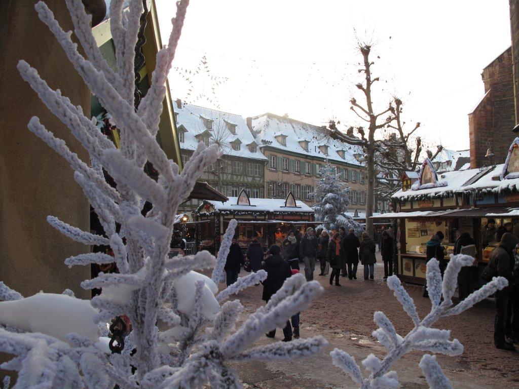 Ambiance diurne sur un marché de Noël, place des Dominicains